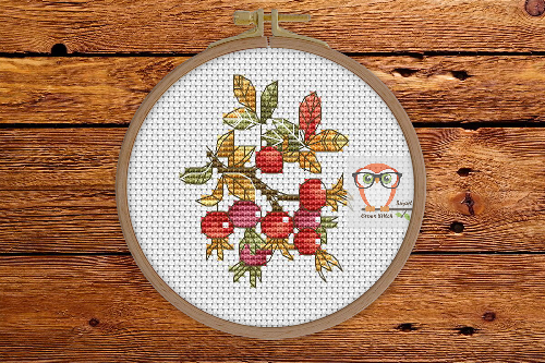 Rosehip berries - Autumn Sampler