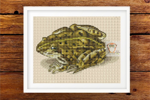 Frog Cross Stitch Pattern