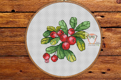 Lingonberry - Forest Gifts